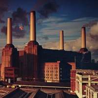 Pink Floyd - Animals
