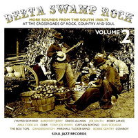 Various Artists - Delta Swamp Rock Volume 2 - More Sounds From The South 1968-75: At The Crossroads Of Rock, Country And Soul